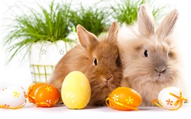 Preview wallpaper Two rabbits, eggs, Easter