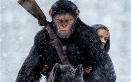 Preview wallpaper War for the Planet of the Apes 2017