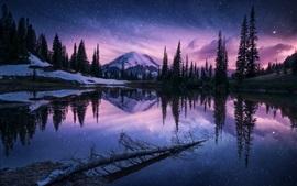 Invierno, lago, árboles, montañas, nieve, cielo, estrellas