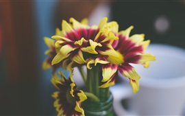 Preview wallpaper Yellow purple petals, flowers, vase