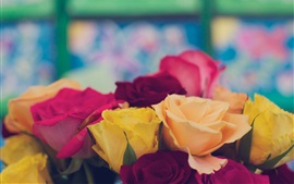 Preview wallpaper Yellow red pink rose flowers