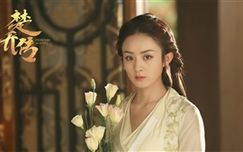 Zhao Liying, série de TV chinesa, Princess Agents