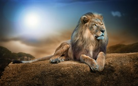 Preview wallpaper Animal close-up, lion, rest, rocks, sunshine