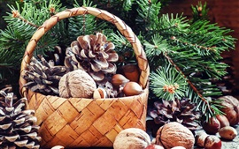 Preview wallpaper Basket, twigs, nuts, hazelnuts, pistachios, walnut