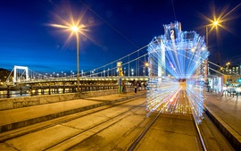 Preview wallpaper Beautiful lighting lines, garland, city, night, bridge, Elisabeth, Hungary