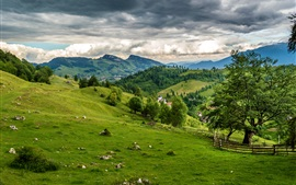 Preview wallpaper Brasov, Romania, meadows, field, mountains, grass, clouds