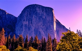 Preview wallpaper California, trees, rocks, mountains, Yosemite National Park, USA