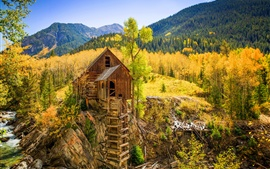 Colorado, water mill, Crystal Mill, forest, autumn, USA