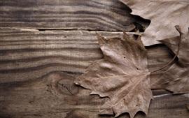 Hoja de arce seca, tabla de madera