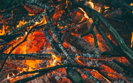 Preview wallpaper Firewood, carbon, fire