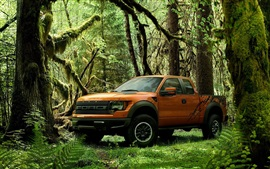 Preview wallpaper Ford Raptor orange pickup in the forest