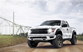 Ford Raptor white camouflage pickup