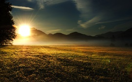 Preview wallpaper Grass, trees, mountains, sunrise, sun rays