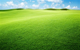 Preview wallpaper Grassland, green, sky