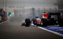 Infiniti Formula 1 race car rear view