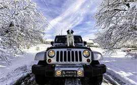 Preview wallpaper Jeep, dog, winter, snow, trees