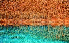 Preview wallpaper Lake, blue water, trees, forest, reflection