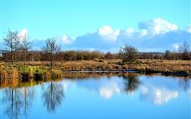 Aperçu fond d'écran Lac, herbe, arbres, nuages, ciel