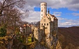 Замок Лихтенштейн, Германия