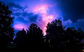 Preview wallpaper Lightning, storm, clouds, trees, night