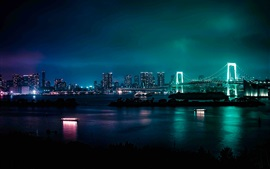 Preview wallpaper Minato, Japan, city night, bridge, river, skyscrapers, lights