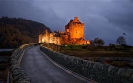 Noite, castelo, iluminação, caminho