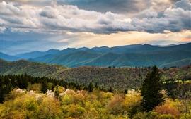 Carolina do Norte, colinas, montanhas, nuvens, paisagem natural