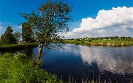 Northern Ireland, Portadown, UK, lake, tree, grass, summer
