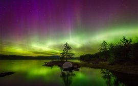 Preview wallpaper Northern lights, lake, trees, stars, night
