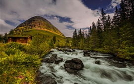 Preview wallpaper Norway, hut, hill, trees, river, nature