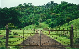 Preview wallpaper Pasture, gate, fence, grass, trees, horse