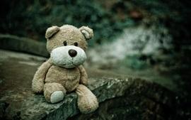 Aperçu fond d'écran Tristesse, ours en peluche, jouet