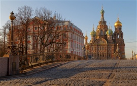 São Petersburgo, Rússia, ponte, igreja, árvores
