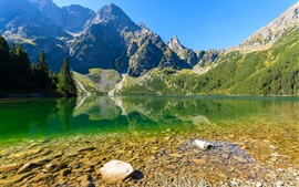 Sea Eye Lake, montagnes, arbres, Pologne, Parc national de Tatra