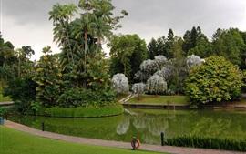 미리보기 배경 화면 싱가포르, 식물원, 공원, 나무들, 잔디