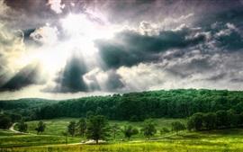 Árvores, nuvens, céu, raios solares, paisagem natural