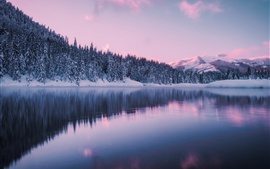 Preview wallpaper Washington, mountains, winter, forest, snow, Gold Creek Pond