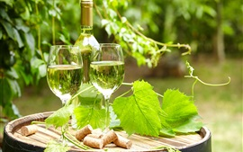 Wine, glass cups, bottle, grape leaves