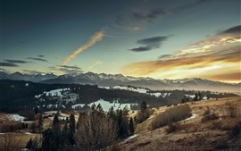 Preview wallpaper Winter, snow, mountains, trees, dusk