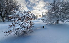 Preview wallpaper Winter, thick snow, trees, bench, houses