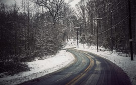 Preview wallpaper Winter, trees, snow, road, power lines