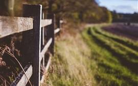 Preview wallpaper Wood fence, grass, field, blurry