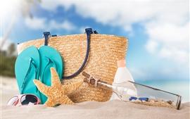 Praia, garrafa, estrela do mar, saco, areias