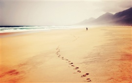 Beach, sea, fog, footprints, person