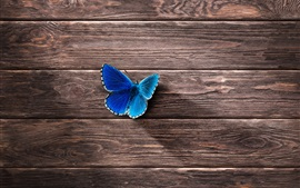 Preview wallpaper Blue butterfly, wood board background