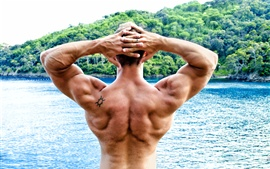 Bodybuilder, back view, man, muscle