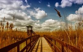 Puente, gazebo, hierba, nubes
