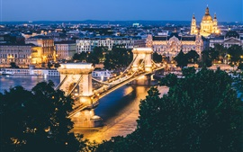 Budapest, Hungary, city night, bridge, illumination