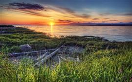 Canadá, costa, rio, grama, pôr do sol
