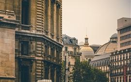 Ciudad, edificios, árboles
